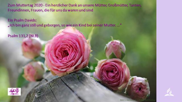 2020_Muttertagsgruß.png